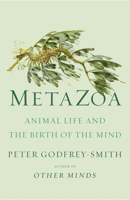Metazoa: Animal Life and the Birth of the Mind. Peter Godfrey-Smith