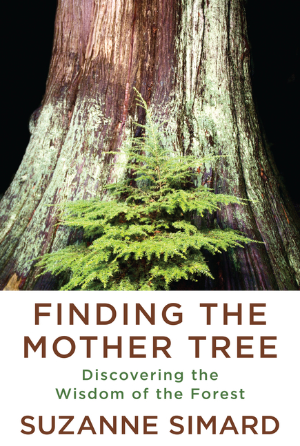 Finding the Mother Tree: Discovering the Wisdom of the Forest. Suzanne Simard
